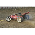 Off-Road Buggy 2 WD